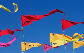 Pennant flags in the wind